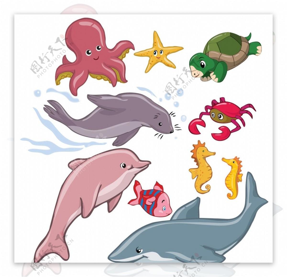 海洋矢量鱼类