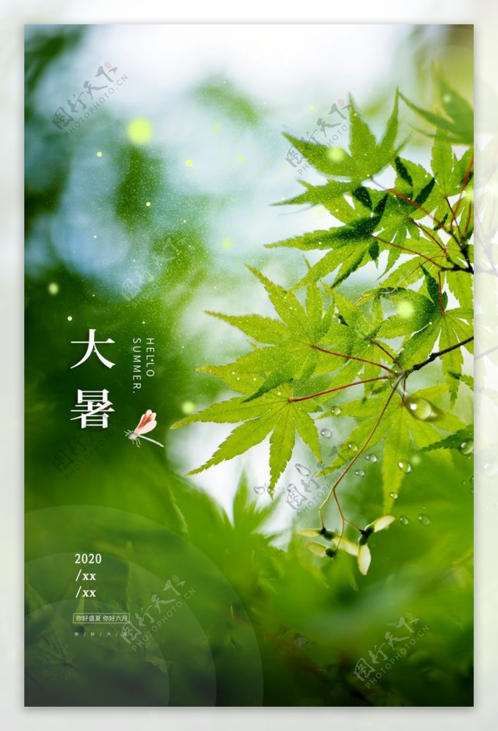大暑传统节日活动宣传海报